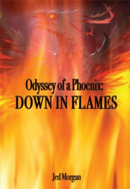 Odyssey of a Phoenix : Down in Flames